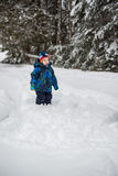 Boy Looking Up at Trees in a Snowy Forest Royalty Free Stock Image