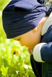 Boy looks at the flower. Little boy looked at the spring flower Stock Photography