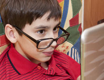 Boy looks on monitor Stock Photography