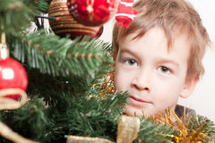 Boy looks out for the christmas treechristmas tree Stock Photos