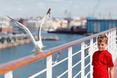 Boy looks after seagull which pecks bread Royalty Free Stock Photo