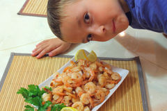 Boy looks at shrimp Stock Image