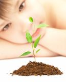 Boy looks at a young plant Stock Photos