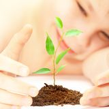Boy looks at a young plant royalty free stock photos