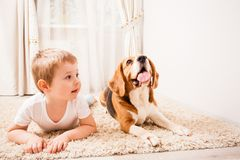 The boy is maing the same actions. The boy is lying on the carpet like his dog Stock Image