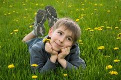 Boy lying on dandelion meadow Stock Photo