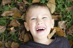 Boy lying on the grass laughing royalty free stock photography
