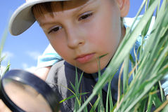 Boy with magnifying glass stock images