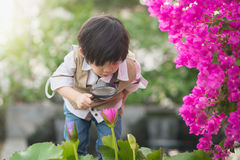 Boy with magnifying glass outdoors Stock Image