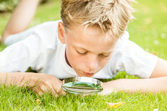 Boy with magnifying glass outside in grass Stock Images