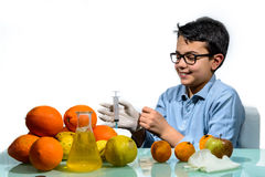 Boy Make the Experiments with Fruit. Stock Photography