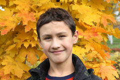 Boy at maple leaf. In falling Royalty Free Stock Photography
