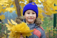 Boy at maple leaf in falling Royalty Free Stock Photos