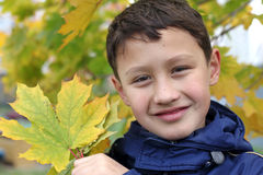 Boy with maple leaf Royalty Free Stock Photo