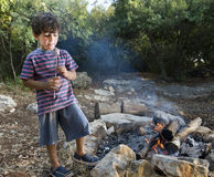 Boy marshmallow campfire Stock Images