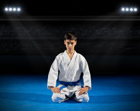 Boy martial arts fighter Royalty Free Stock Images