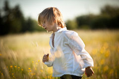 Boy on meadow Royalty Free Stock Images