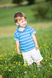 Boy on the meadow Stock Photo