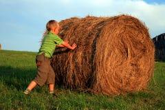 Boy on meadow Stock Photos