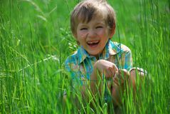 Boy in Meadow Stock Image