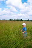 Boy on meadow Royalty Free Stock Photos