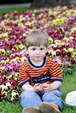 Boy on a meadow. Royalty Free Stock Photography