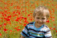 Boy on meadow Royalty Free Stock Photo