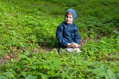 Boy in the meadow Stock Photos