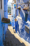 A boy at Medina of Chefchaouen, Morocco Royalty Free Stock Photography