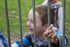 Boy on a metal fence Stock Image