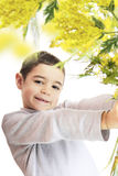 Boy with  mimosa. Boy with a bouquet of mimosa Royalty Free Stock Photo