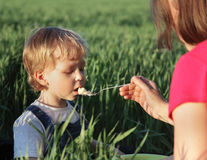 Boy with mom eats Royalty Free Stock Images