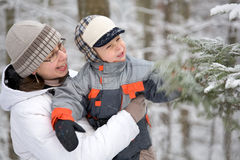 Boy with mom in winter forest. The boy with mom shakes spruce with snow Royalty Free Stock Image
