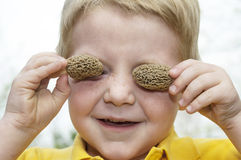 Morel mushroom eyes Stock Images