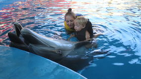 Boy and mother with dolphins stock footage