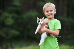 Boy  with motley cat. Boy playing  with motley cat on green grass Stock Photo