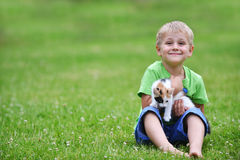 Boy  with motley cat. Boy playing  with motley cat on green grass Royalty Free Stock Photo