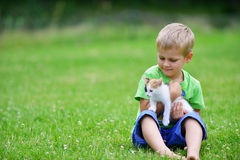 Boy  with motley cat. Boy playing  with motley cat on green grass Stock Image