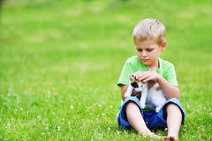 Boy  with motley cat. Boy playing  with motley cat on green grass Royalty Free Stock Photos