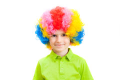 The boy in a multi-coloured clown wig Stock Photos