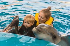 Boy and mum float with dolphins Stock Photo