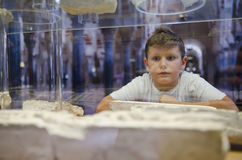 Boy in museum looking ruins Stock Image