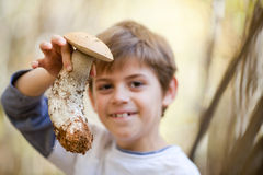 Boy with mushroom Stock Photography