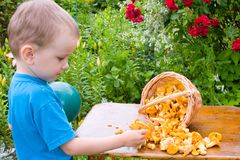 Boy with mushrooms Royalty Free Stock Photos