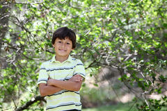 Boy n the forest series Royalty Free Stock Image