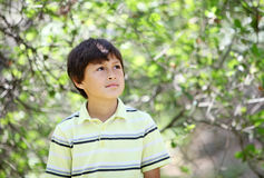 Boy n the forest series Stock Photography