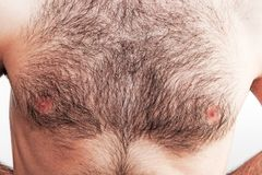Boy with naked hairy chest on white background. Boy with naked hairy chest Stock Photo