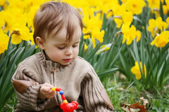 Boy and narcissus Stock Images