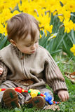 Boy and narcissus Royalty Free Stock Photos