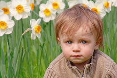 Boy and narcissus Royalty Free Stock Image